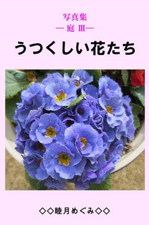 写真集 ― 庭 Ⅲ ― うつくしい花たち 睦月めぐみ