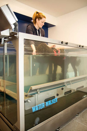 Unterwasserlaufband