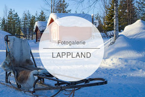 Fotogalerie Lappland, Hundeschlitten, Nordlichter, Schneemobil, Die Traumreiser