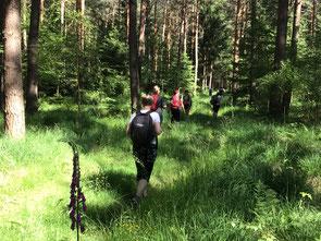 Trauernder Engel, Trauer, Trauerbegleitung, Trost nach Todesfall