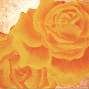 Rosengemälde AUTUMN, Öl und Kompositionsblattgold auf Leinwand 65 x 65 cm Pia Phoenix