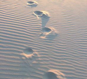 Fußspuren im Sand, mit kleinen Schritten den Klimaschutz voran bringen