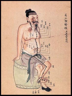 Acupunctuur merdianen kaart