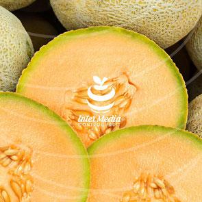 Sabias que el melon es uno de los productos no tradicionales de Honduras
