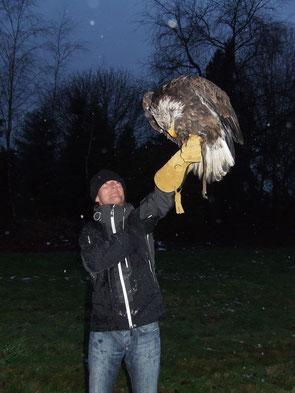 www.ronaldosephius.nl Roofvogel Zeearend Bewust Groeien vanuit innerlijke kracht