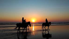 vacaciones con mi caballo, salidas de ocio, salidas de caballo , caballos