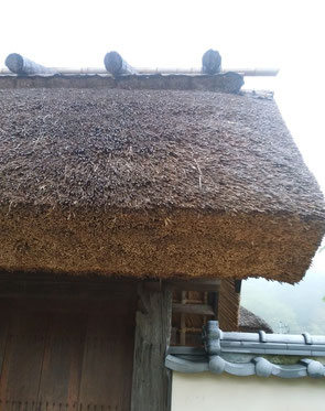 門の茅葺き屋根を見上げる