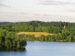 vacances en Limousin : randonner avec un âne autour du lac de Vassivière
