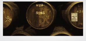 Porto, Porto wine, cellars