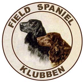 Field Spaniel Klubben Sweden