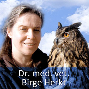 Tierärztin Dr. Birge Herkt mit Stationsuhu Bubo, einem Liebling der Kinder, die die Kleintierpraxis oder die Storchenstation besuchen