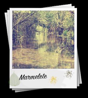 Monchique mountain bike tour