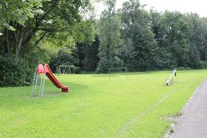 Für diesen Spielplatz am Waldrand der Kobelhöhe Niederuzwil werden zusätzliche Spielgeräte für grössere Kinder angeregt.