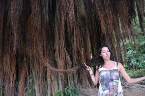 Conectándonos al árbol