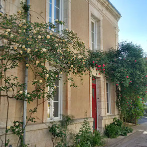 rental-holiday-house-chedigny-loches-amboise-loire-valley-village-flowers