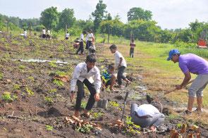 Children planted 100 teak trees, 10 Albizia Lebbeck trees, 10 Afzelia xylocarpa trees.