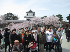 ~石川門と満開の桜~