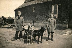 Boerderij met kar en twee jongens klaar om met de hondenkar naar de molen te gaan om graan te laten malen.