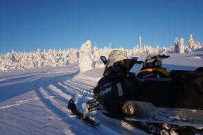 Snowmobiles in the vastness of Lapland
