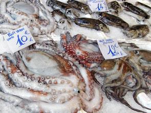 (c) stockata.de 0030060-fischmarkt-markt-octopus-tintenfisch