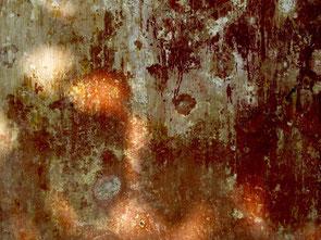 Wandbilder von der Natur geschaffen