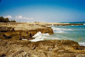 die Küste unterhalb von Ostuni felsig und bizarr