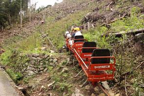 林内に4路線あるモノレール路線のひとつ