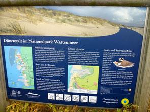 Bild: Informationsschild auf den Dünen