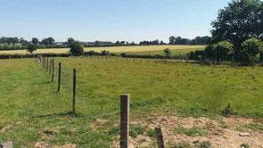 Vente/Achat terrain à Rieux 56350