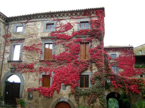OmoGirando la Civita di Bagnoregio - Palazzo Colesanti
