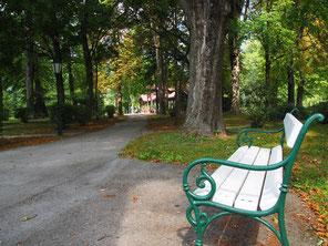 Rustiek plekje in park Reichenau