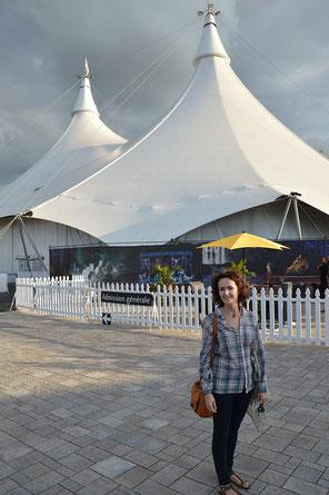 cirque-du-soleil-chevaux-en-liberté-en-spectacle