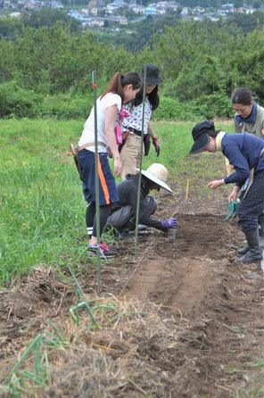 農業体験 体験農場 自然栽培 固定種 さとやま農学校