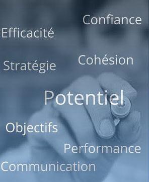 nuage de mots : objectifs, stratégie, cohésion, potentiel, performance, communication, efficacité, confiance