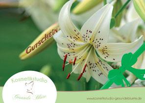 Gutschein Kosmetikstudio Gesunde Blüte