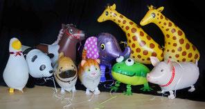 Heliumballon Ballon Luftballon Geschenk Tier Tiere Airwalker läuft schwebt Ballon Geburtstag Party Kindergeburtstag Deko Dekoration witzig verschicken Schwein Frosch Giraffe Elefant Katze Hund Panda Pferd Pony Gans Ente zum Nachziehen