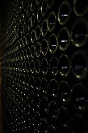 VinoLoire - Vincent Delaby - Excursions privilégiées dans les domaines vignobles du Val de Loire - Visites découverte autour d'Azay et Chinon