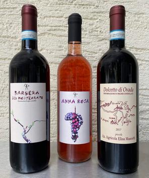 Weine aus Piemont vino piemontese Barbara dolcetto di Ovada, wein online kaufen, Onlinehandel für weine, wein aus italien, guter Rotwein, rosewein, rosé wein online kaufen, rosewein aus italien, wein aus piemont, Feinkost aus Italien, italienischerrotwein