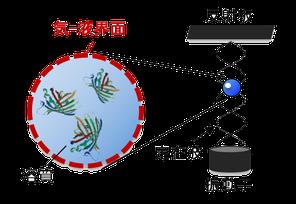液滴の音響浮揚の模式図