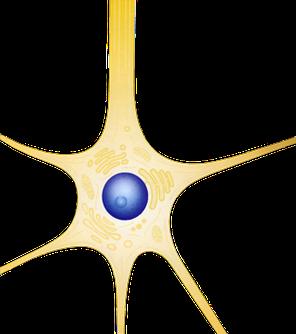 Logo Neuron neurologen-dortmund.de