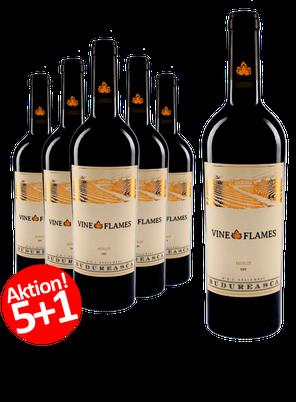 6-er Weinpaket | The Vine in Flames Merlot 2016