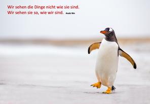 Startnext Birgit Krüger NRW Sozialkompetenz Soziale Kompetenz IMPULS CAMPUS