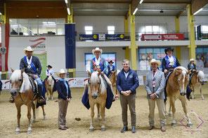 Priska Kelderer auf Haflingerwallach Monsun beim Haflinger European Championat 2021 in Stadl-Paura in Oberösterreich (AUT) Monsun; Pferde; Haflinger