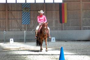 Priska Kelderer sulla cavalla Quarter Charlott, al torneo di Cowboy Dressage a Hebertsham bei Wasserbug (GER). Cavalcare a Caldaro; squola equestre; cavalli; Quarterhorse