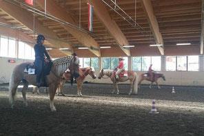 Priska Kelderer su Haflinger Lilli, alla finale del campionato western 2017 a Carezza. Cavalcare a Caldaro; squola equestre; cavalli; Haflinger