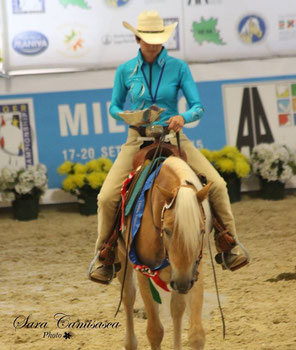 Priska Kelderer con Champ, al European Haflinger Championship 2015 a Vermezzo (Milano). Cavalcare a Caldaro; squola equestre; cavalli; Haflinger