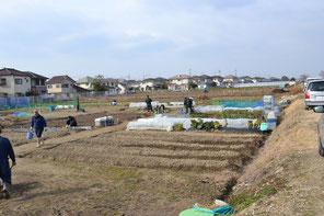 南エリアDブロック 土作り 上津橋れんげいじファーム 20130120