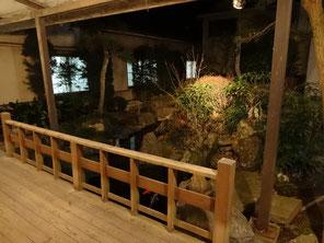 中庭の様子(池に鯉がいます)