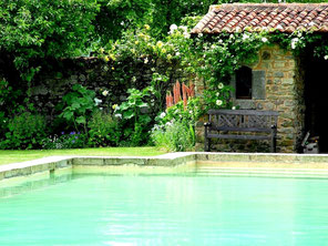 the pool at Tennessus castle bed and breaklfast