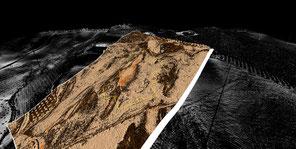 Ortofotografía sobre modelo digital del terreno. / UCO